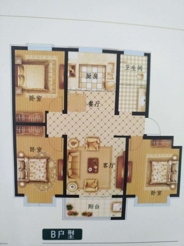 舜昕缘 3室2厅  精装 49万